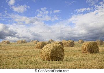 Straw bales on farmland with cloudy sky