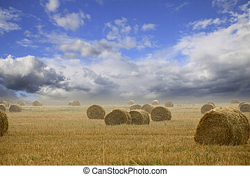 Straw bales on farmland with cloudy sky