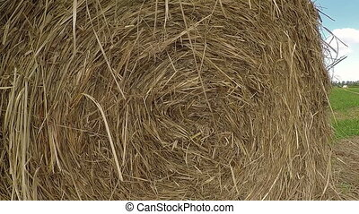 Straw bales on the meadow, white clouds in the sky in...