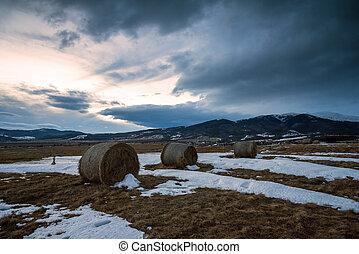 Straw bales on winter field.