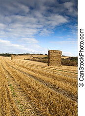 Straw Bales stacked in farm field at harvest time