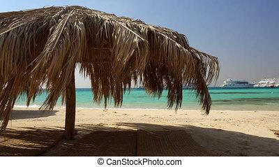Straw beach umbrellas at a tropical resort