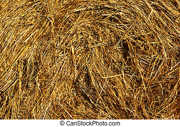 Straw Close Up