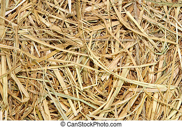 Dried straw tied with natural fiber string.
