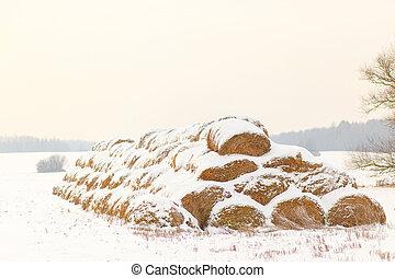 Straw Fodder Bales in Winter
