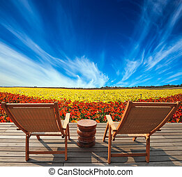 Straw hat on a deck chair