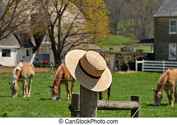 Straw hat with Amish farm in the background