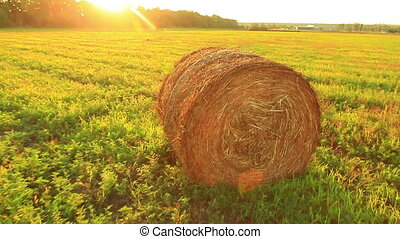 straw in the field - straw in a field at sunset in late...
