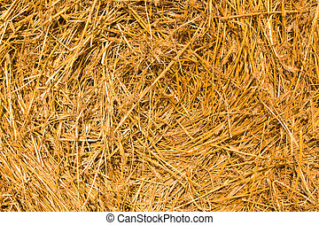Photographed close up a stack of the cleaned straw
