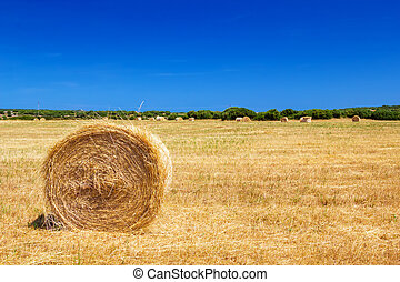 Straw roll bale on the farmland in sunny day at Menorca, Spain.