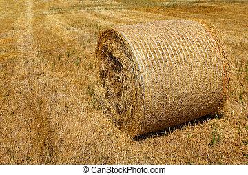 Straw roll bale on the farmland in sunny day