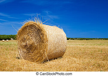 Straw roll bale on the farmland with the clear blue sky