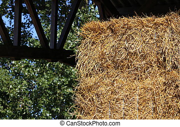 Straw stacked in the stable shed to feed the horses