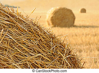 Straw stacks