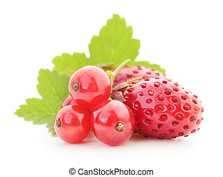 strawberries and red currants with leaves on white