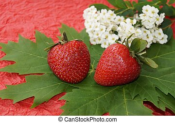 Strawberries and spring flowers