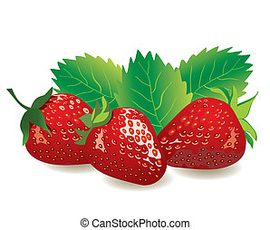 strawberries - vector red strawberries