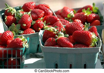 Photographed strawberries for sale at a local outdoor market in Florida.
