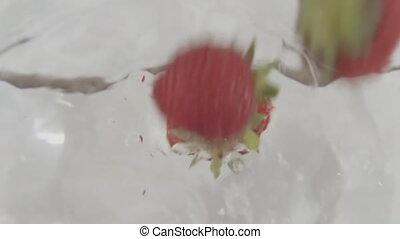 strawberries throw water - mature strawberries throw water...