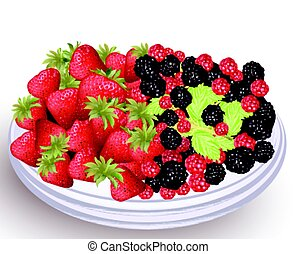 Strawberry and blackberry fresh fruits on a white plate. Vector illustration