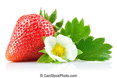 strawberry berry with green leaf and flower isolated on...