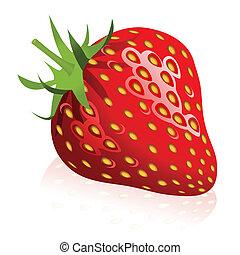 Strawberry - Illustration of strawberry