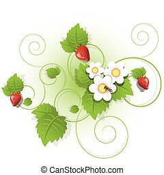 strawberry - Illustration, berries and sheet of the...