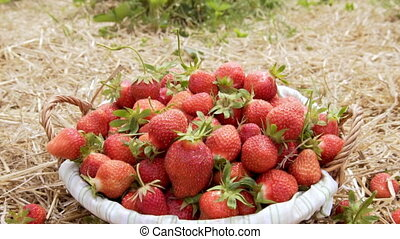 Strawberry falls into the basket, slow motion