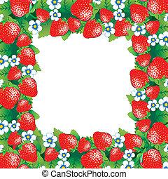 Beautiful strawberry frame. Vector art-illustration.