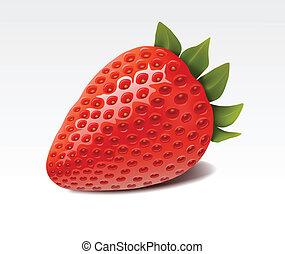 Fresh isolated strawberry