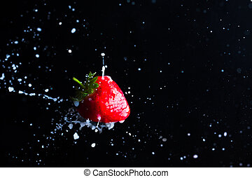 Strawberry fruit close up and milk splashes on the black background. Yoghurt or cocktail with strawberry concept