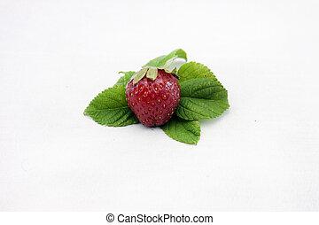 strawberry fruit