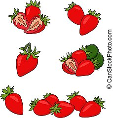 Strawberry fruit vector