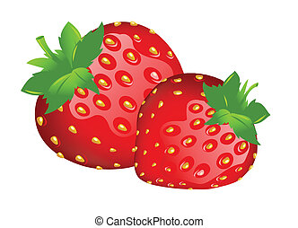 strawberry illustration