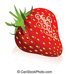 Strawberry - Illustration of strawberry