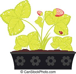 Strawberry in Flower Pot - Abstract cartoon strawberry...
