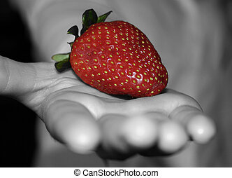 Strawberry in Hand - A bright red strawberry in a black and...