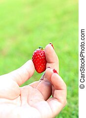 Strawberry in hand on a green background.