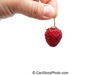 strawberry in her hand on a white background