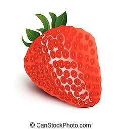 Strawberry isolated on white background-Vector Illustration