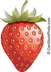 Strawberry - Ripe and red strawberry isolated on white. EPS ...