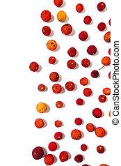 Strawberry Tree (Arbutus Unedo) fruit - Close up view of...