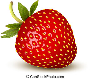 Strawberry. Vector.