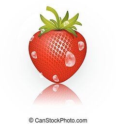 Strawberry Vector Illustration Isolated on White Background