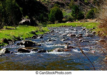 Excellent trout fishing is available in streams like this one throughout Colorado