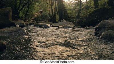 Stream and natural pool in the rainforest - Brook and ...