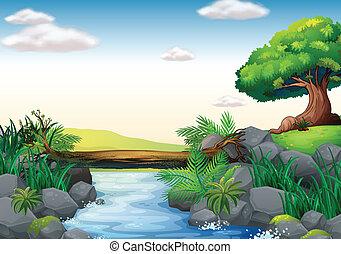 Stream - Illustration of a scene of a stream