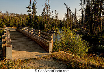 Stream crossing footbridge leads from an Idaho forest in nature