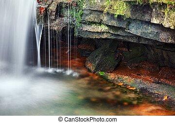 Stream detail in color autumn