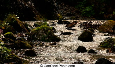 Stream - Fast mountain stream